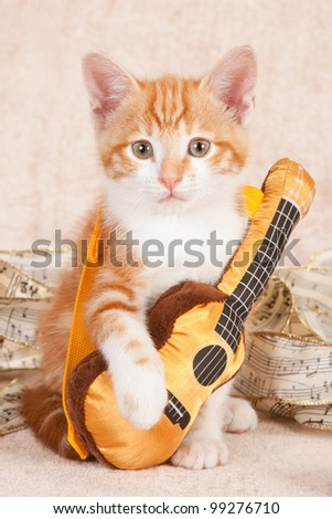 Moggie kitten with miniature toy guitar on beige background