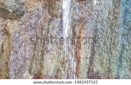 moist cliffs in the forest #1482437525