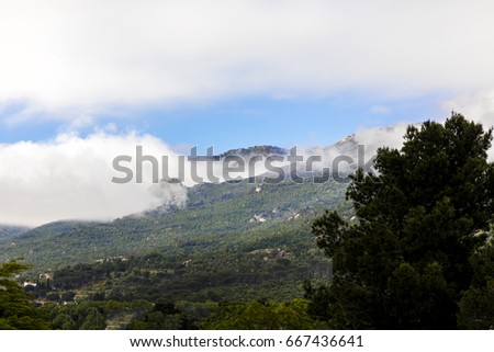 Moist vapor rises from the forest trees on the green hill in east Spain