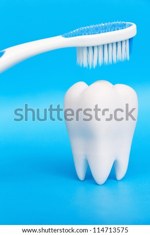 Molar With Brush,dental concept