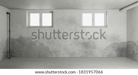 Mold and moisture after water damage in the basement of a house (3d rendering) Foto stock ©