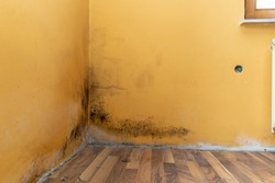 Mold build up in a corner of a poorly hydro isolated house
