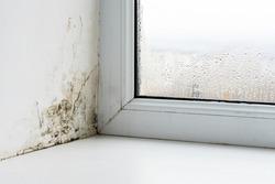 Mold in the corner of the plastic windows.