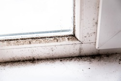 mold in the corner of the window