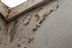 Mold, mildew on the wall in humid places. The most destructive fungus due to moisture and lack of ventilation. Peeling paint due to high humidity. The problem of damp rooms without ventilation