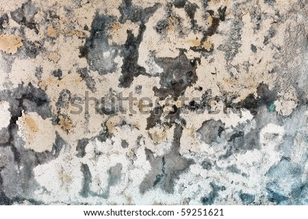 Mold stains on a surface of weather-beaten humid plaster