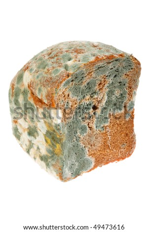 Moldy bread. Isolated on white background