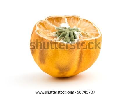moldy lemon isolated over white