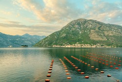 Molluscan Shellfish farming . Mollusc aquaculture , shellfish farming . Scenery with coastal mountains