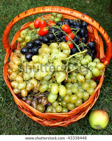 Molly with fruits white and black grapes