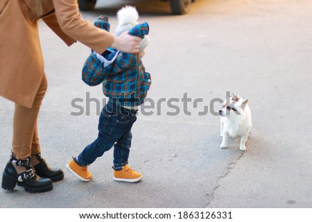 mom and child walk with the dog. Baby's first steps Сток-фото ©
