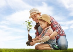 Mom and her child girl plant sapling tree. Spring concept, nature and care.