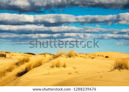 Monahans Sandhill State Park in Texas