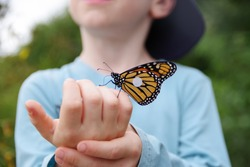 Monarch Butterfly on Child's Hand with Blank Tag on Wing