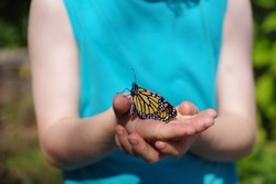 Monarch Butterfly on Child's Open Hand