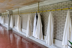 Monastic robes for monks in a monastery hanging on a wall