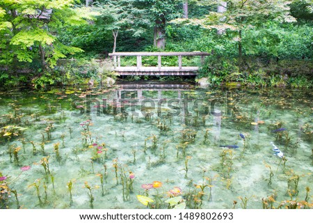 Monet's pond in Gifu, Japan. A beautiful pond like Monet's painting, commonly known as Monet's Pond Is called.