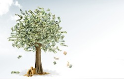 money and gold tree
