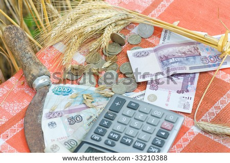 Money and wheat stalks.