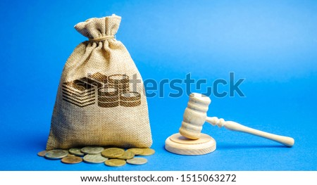 Money bag and judge's hammer. Penalty for a crime and offense. Financial punishment. Violations of traffic laws. Fraud. Fine, penalization, mulct. Gavel