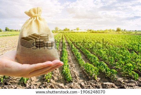Money bag in the hand of the farmer on the background of agricultural crops. Profit from agribusiness concept. Agricultural startups. Lending and subsidizing farmers