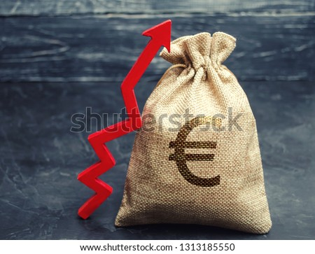 Money bag with a euro sign and a red upward arrow. The concept of business and finance. Profit growth. Revenue analysis. Increase the company's budget. Capital accumulation. Salary increase #1313185550