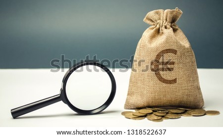 Money bag with euro sign and magnifying glass. The concept of finding sources of investment and sponsors. Charitable funds. Startups and crowdfunding. Search for available loans. Find a job. #1318522637