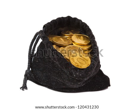 Money coins in bag on white background isolated