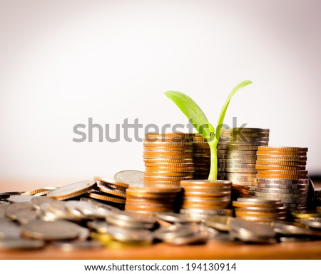 money coins pile and young tree on green background in banking concept