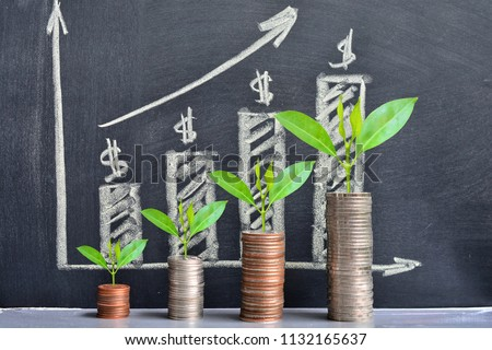 money coins saving growth up increase to high profit interest for concept investment mutual fund finance and business  Foto stock ©