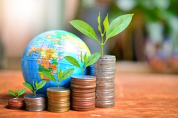money coins saving growth up increase to high profit interest with global background for concept investment mutual fund finance and business