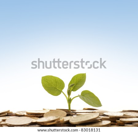 Money concept over blue background