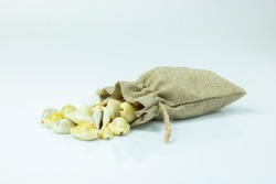 Money cowry in a sack on white background