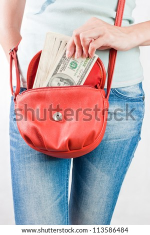 Money dollars in handbag