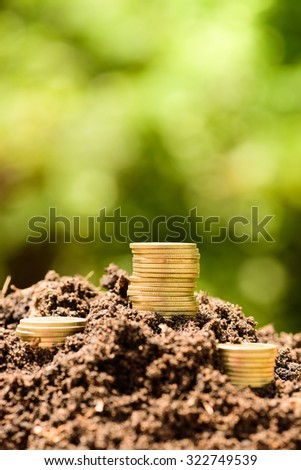 Money Gold coin stack growing graph on ground with green bokeh background ; Business Finance and Money concept