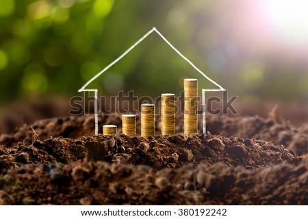 money growing in soil   success ...