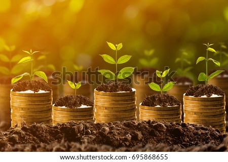 Money growing in soil,success concept #695868655