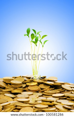 Money growth concept with coins and seedling