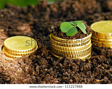 Money growth. Golden coins in soil with young plant. Financial m