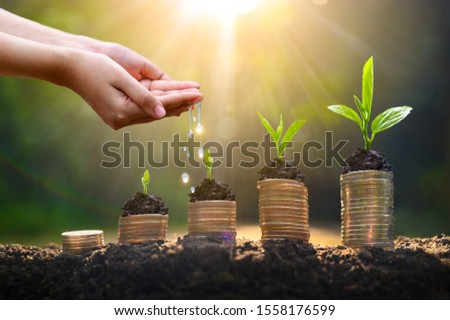 Money growth Saving money. Upper tree coins to shown concept of growing business ストックフォト ©