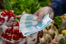 Money in hand against the background of the counter with vegetables at the market. A man pays in rubles. Close-up. The high coas the fresh food.