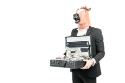 Money is wealth. Businessman in horse head mask hold suitcase with dollars. Investment for money return. Monetary capital. Money-making business, copy space.