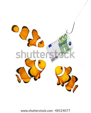 Money on the hook and three clown fish - business metaphor - stock photo
