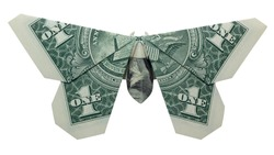 Money Origami BUTTERFLY Folded with Real One Dollar Bill Isolated on White Background