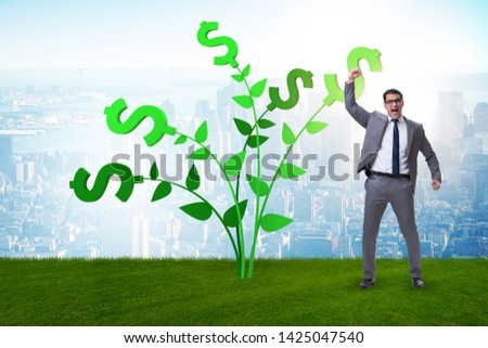 Money tree concept with businessman in growing profits  #1425047540