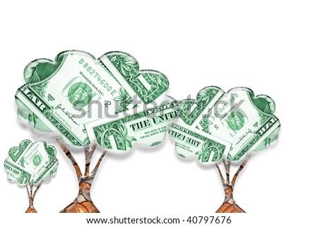 Money trees on white background. - stock photo