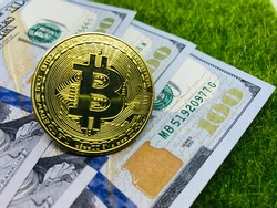 Money; US dollar banknote and bitcoin on grass background. Business, finance, Account, Economy, trade and investment concept.