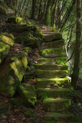 Monfero, Spain - April 1, 2015: Old stone staircase on a trail through the woods, mossy and illuminated by faint sunlight.
