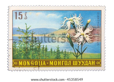 MONGOLIA - CIRCA 1985: A stamp printed in Mongolia showing flower circa 1985