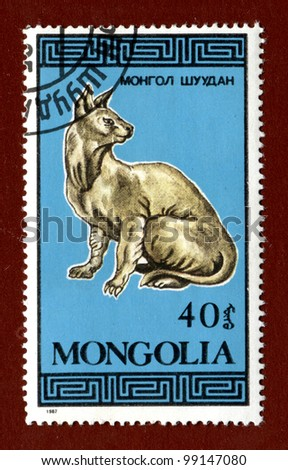 MONGOLIA - CIRCA 1987: A stamp printed in Mongolia shows breeds of cats, circa 1987